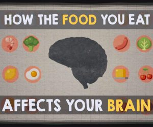 Food For Thought – Eat For Your Brain